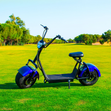 Citycoco (1) 1400W / 12Ah Azul / Negro Scooter Electrica Last Mille (III)