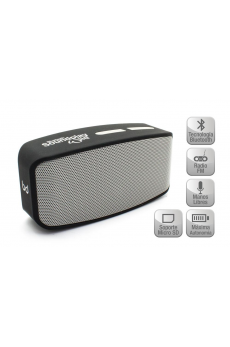 Altavoz SoundPlay Wild Bluetooth Silver Biwond